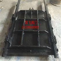电动铸铁镶铜方闸门