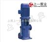 LG全国最专业的多级离心泵生产厂家上海上一泵业制造有限公司